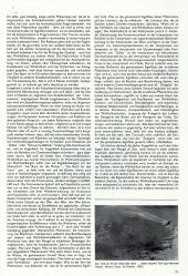 /tessmannDigital/presentation/media/image/Page/0280_006/0280_006_4_object_5890888.png