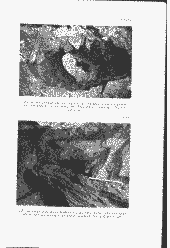 /tessmannDigital/presentation/media/image/Page/147248/147248_231_object_4837396.png