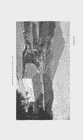 /tessmannDigital/presentation/media/image/Page/314111/314111_8_object_4611498.png