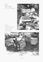 /tessmannDigital/presentation/media/image/Page/327691/327691_118_object_5276259.png