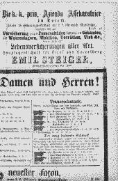 /tessmannDigital/presentation/media/image/Page/InnsbNach/1870/17_12_1870/InnsbNach_1870_12_17_12_object_7321300.png