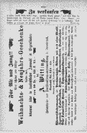 /tessmannDigital/presentation/media/image/Page/InnsbNach/1870/17_12_1870/InnsbNach_1870_12_17_14_object_7321302.png
