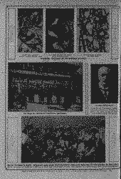 /tessmannDigital/presentation/media/image/Page/LZ/1913/04_11_1913/LZ_1913_11_04_12_object_3305996.png