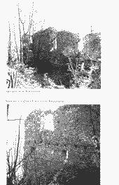 /tessmannDigital/presentation/media/image/Page/Schlern/1984/01_03_1984/Schlern_1984_03_01_11_object_5978299.png
