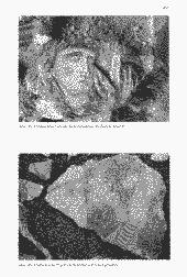 /tessmannDigital/presentation/media/image/Page/Schlern/1997/01_08_1997/Schlern_1997_08_01_45_object_6012257.png
