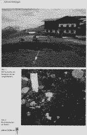 /tessmannDigital/presentation/media/image/Page/Schlern/2010/01_12_2010/Schlern_2010_12_01_48_object_6043564.png